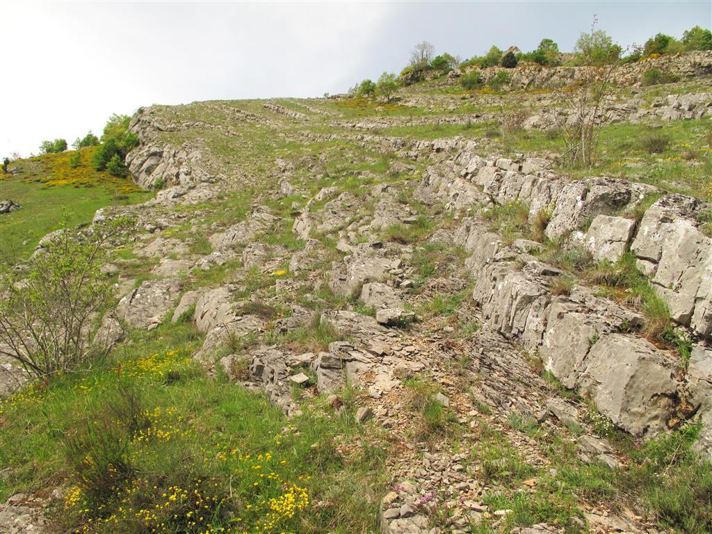 Afloramiento de las calizas arrecifales de la Formación Portilla, del Devónico Medio, pertenecientes al manto de Corniero (autóctono relativo), junto al camino que conduce al cementerio de Valdoré.