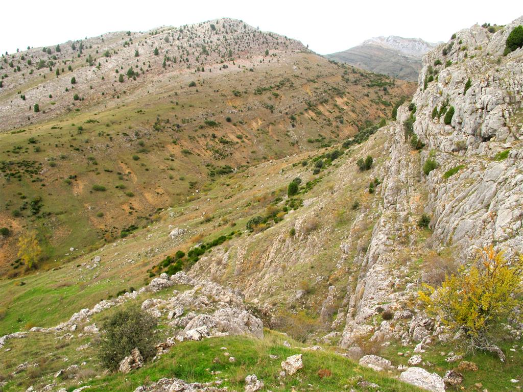A diferencia de lo que ocurre en otras láminas alóctonas de la Región del Manto del Esla, la secuencia estratigráfica aparece muy completa en el propio Manto del Esla. Estas diferencias estratigráficas afectan especialmente al Devónico, ya que la erosión pre-Fameniense provocó la desaparición de varias formaciones de este periodo en el Manto de Corniero y en la Escama de Valbuena; sin embargo, en el Manto del Esla, las rocas devónicas están muy bien representadas. En esta imagen, tomada al norte de Aleje, se identifican las rocas del Grupo La Vid (tonos anaranjados) y de la Fm. Santa Lucía (tonos grises), del Devónico Inferior-Medio.