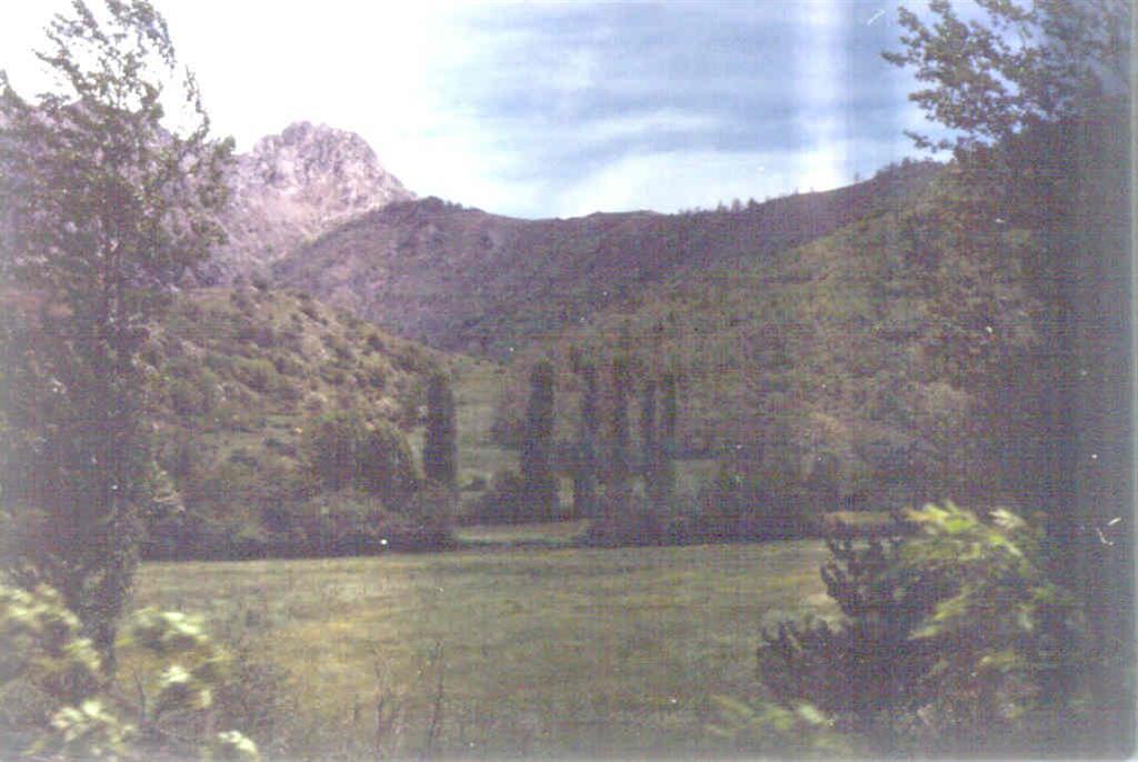 Manto de Esla al Norte de Crémenes. A la izquierda Caliza de Montaña autóctona. En el centro Cámbrico y Ordovícico cabalgantes (fotografía tomada en 1981).