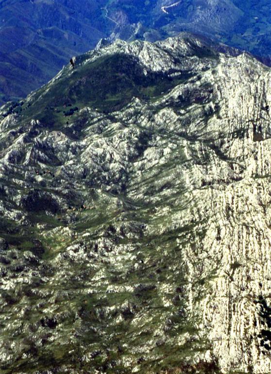 Panorámica aérea del sector occidental de la S. del Cuera. Estratificación vertical y techo hacia la derecha (N). Obsérvese, en la parte central de la fotografía, la progradación del margen de la plataforma (flechas) representado por el cambio de orientación de las calizas bien estratificadas del techo de la plataforma.