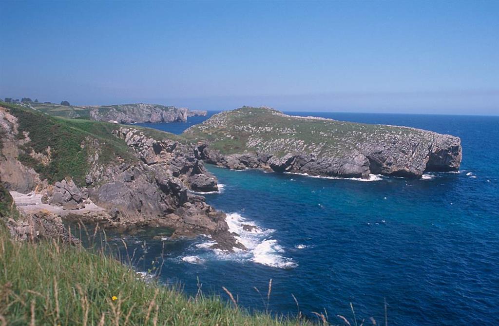 Sección Playa La Huelga, parte superior. Facies reconocidas también en la Sierra del Cuera. Tramos con facies carbonatadas de plataforma interna y externa con fauna fósil bentónica Moscoviense superior. Intercalación siliciclástica