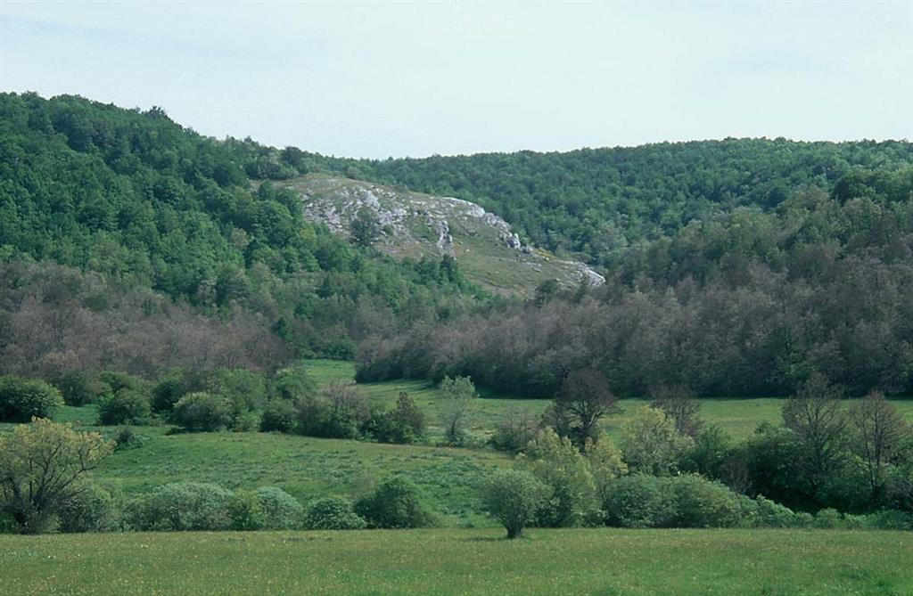 Olistolito o megabloque calcáreo del DTM de Brañosera (DTM de Herreruela, Kasimoviense inferior), en el sinclinal de Castillería, Valle de Castillería, cerca de Vañes, Palencia