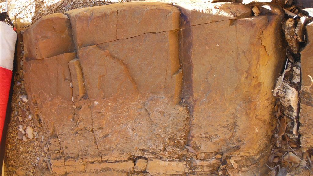 Capas de tormenta aproximadamente en la misma posición estratigráfica que las fotos anteriores (Fm. Tres Mojones), con un tramo basal formado por una acumulación bioclástica, que constituye casi la mitad de la capa y techo ondulado de ripples.