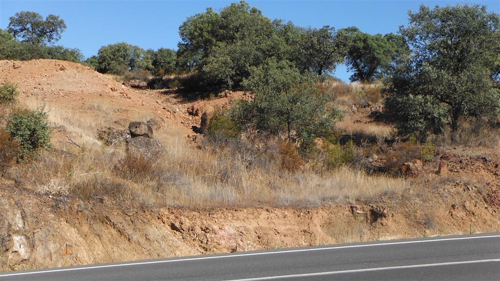 Labores mineras abandonadas (rafa y escombreras) de la mina de La Fidela, que encaja en los materiales del Devónico Superior.