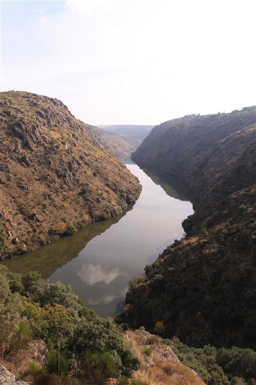 El encajamiento del río Duero aguas arriba del puente-viaducto de Requejo