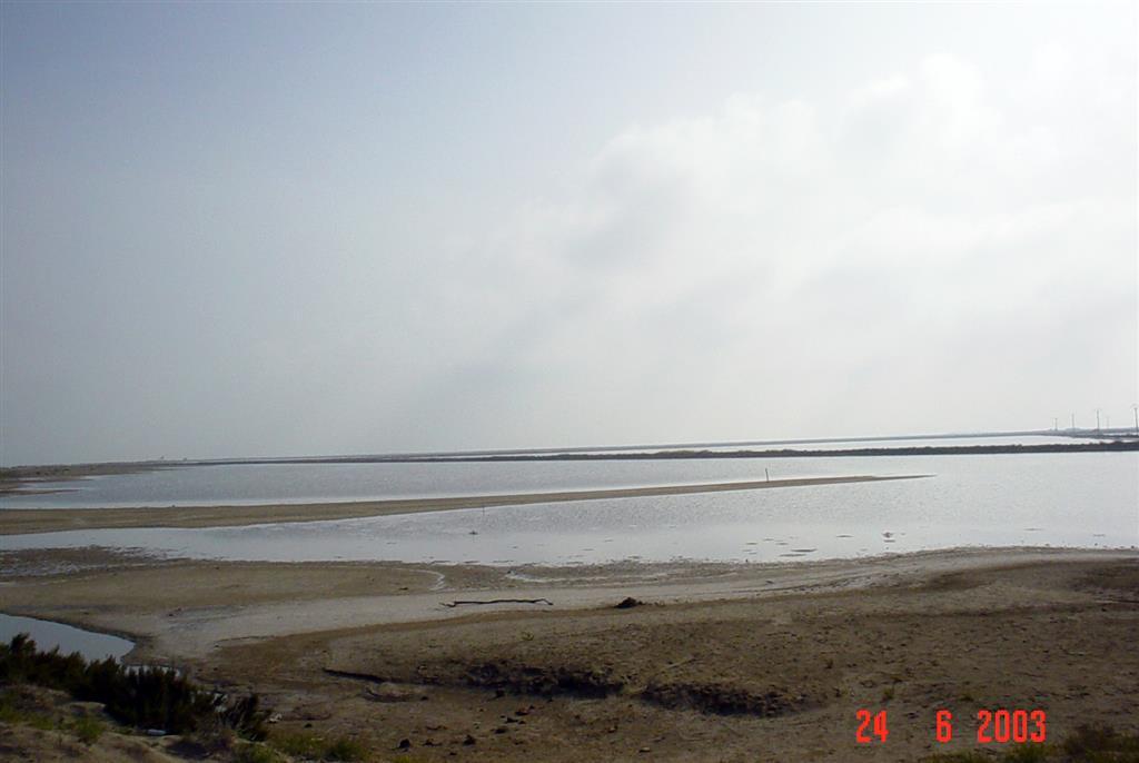 Depósitos arena y fango en interior de salinas abandonadas de La Banya. Los primeros están ligados a desbordamientos episódicos; los segundos constituyen acumulaciones palustres de tipo marjal.