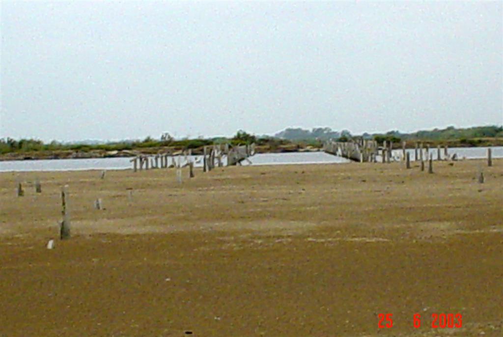 Antiguo canal principal de desembocadura del río Ebro en el delta, hoy inactivo y cerrado por una barra arenosa en el Cabo de Tortosa (Isla de San Antonio). Conjunto de postes correspondientes a antiguas instalaciones pesqueras.