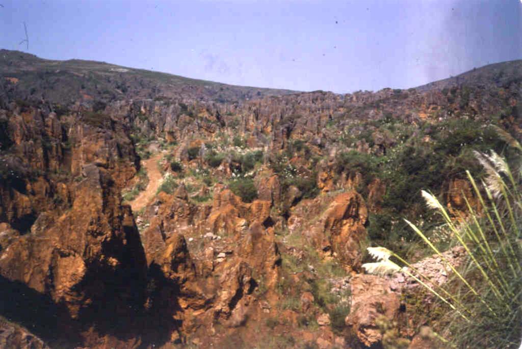 Vista parcial del karst de Cabárceno.