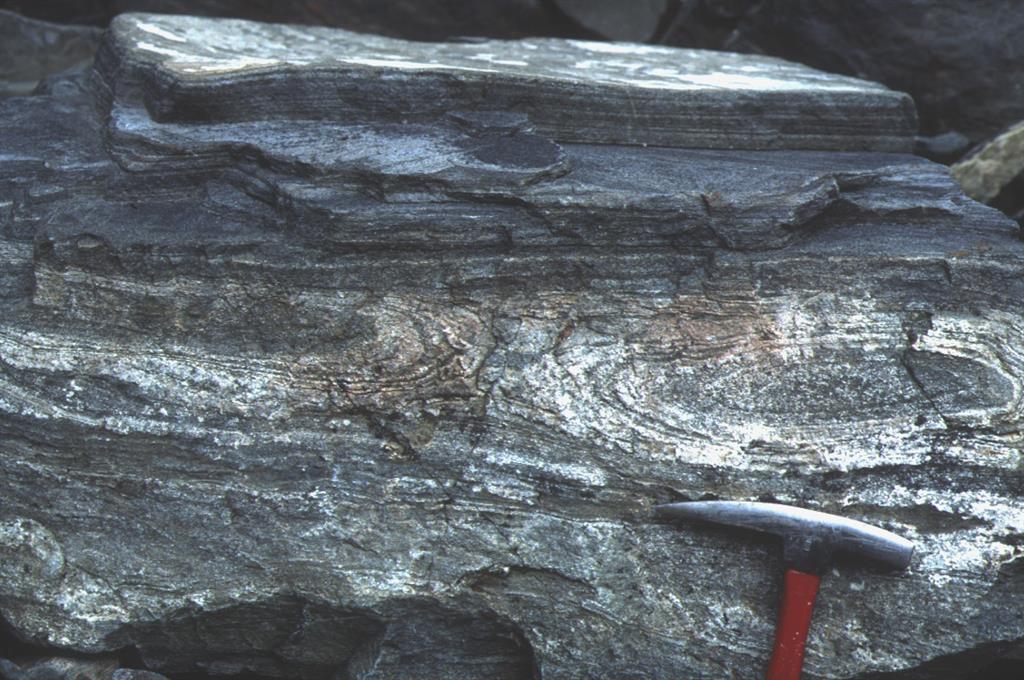 Formas cerradas correspondientes a pliegues en vaina intrafoliares que doblan a foliación milonítica desarrollada durante cabalgamiento que emplazó las unidades catazonales. Unidad tectónica sup., unidad alóctona de Cedeira al O de esta localidad