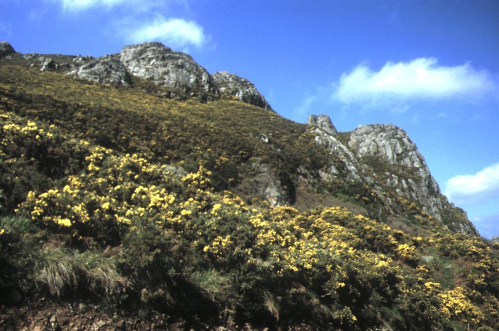 El macizo de eclogitas de Monte Castrillón en la cresta que sube desde la Punta de los Aquillones hasta el pico Gargacido