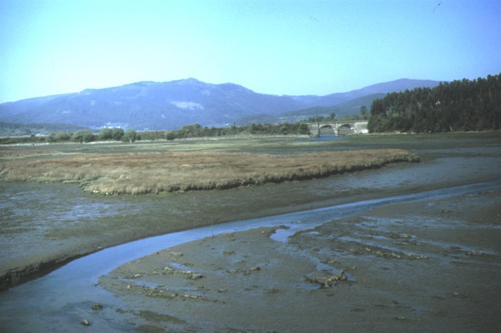 El macizo de eclogitas de Monte Castrillón, al fondo, visto desde la Ría de Ladrido, parte de la Ría de Ortigueira al norte de esta última localidad