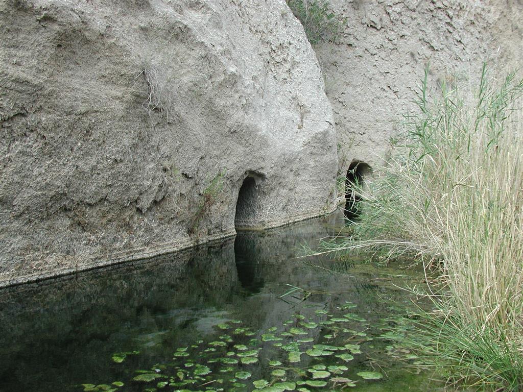 Manantial de Los Molinos del Río Aguas, aprovechamiento mediante galerías de origen árabe. El manantial surge en la base del Miembro Sorbas en contacto con los limos impermeables del Miembro Abad