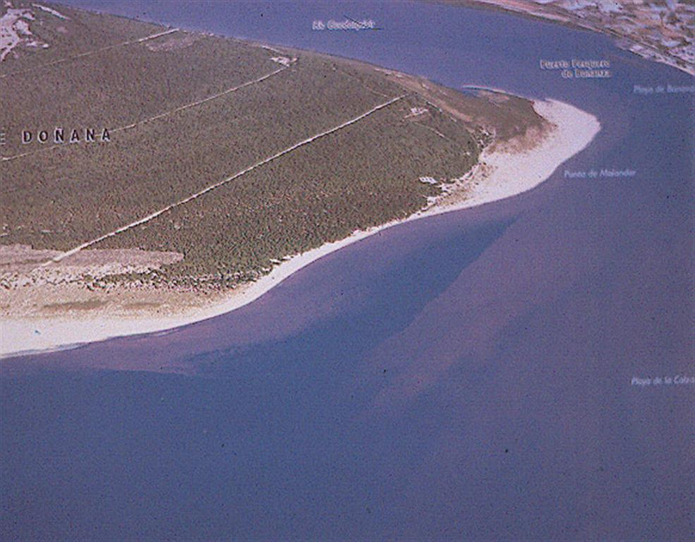 Vista aérea oblicua del estuario del Guadalquivir