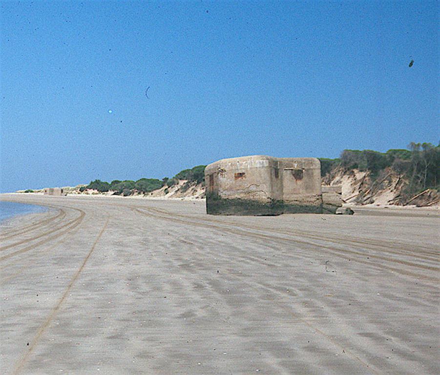 Bunker costero caído y escarpe erosivo sobre dunas. Costa de Doñana en el estuario del Guadalquivir