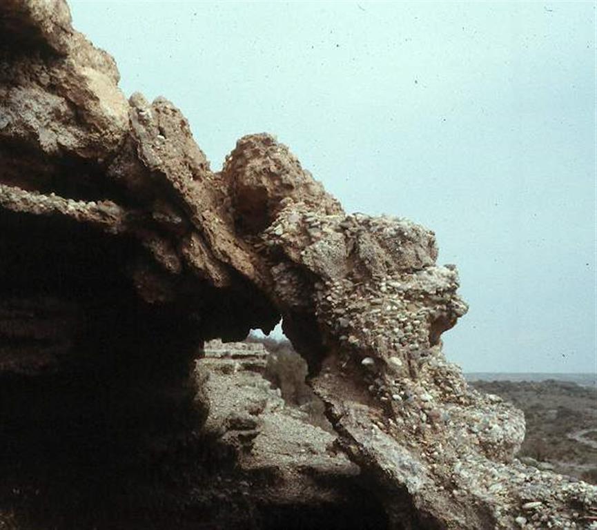 Falla normal afectando a nivel de terraza marina pleistocena. Las terrazas marinas y los abanicos aluviales que limitan al N, están afectadas por deformaciones tectónicas importantes, frágiles, en forma de varias familias de fallas normales NW-SE y N-S