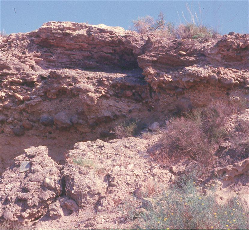 Aspecto general de uno de los muchos niveles de terrazas marinas pleistocenas del Campo de Dalías, constituidas por depósitos conglomeráticos cementados de antiguas playas