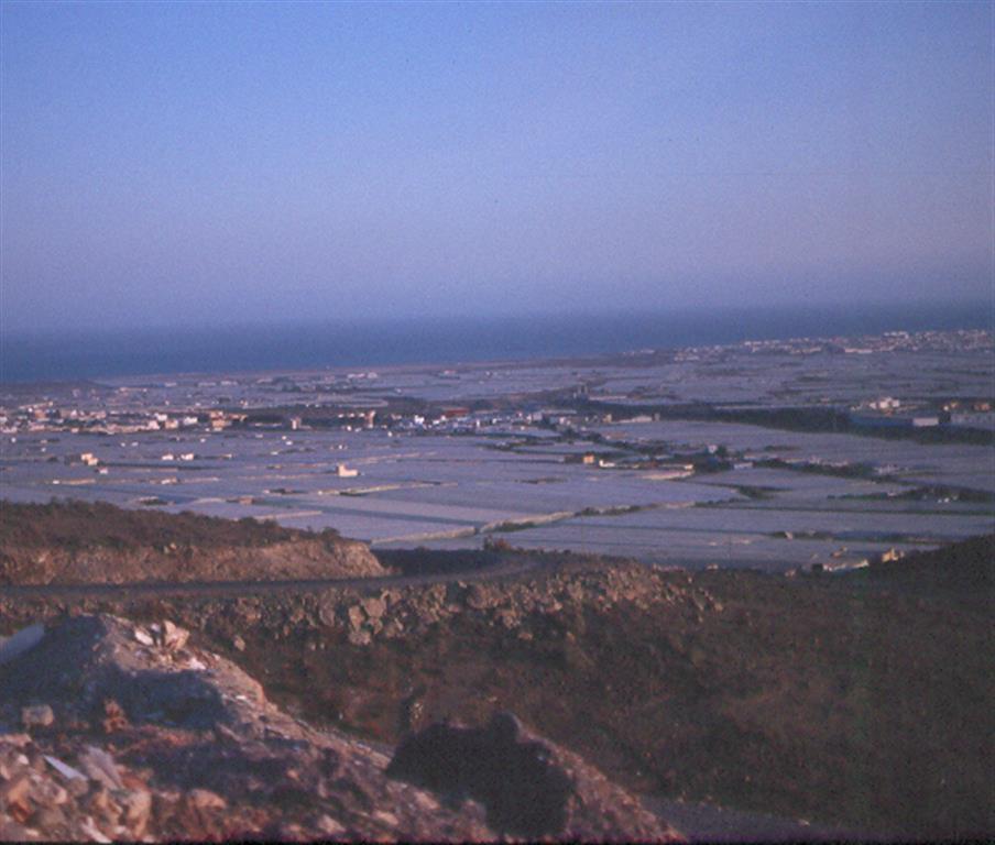 Vista Campo de Dalías desde Sierra de Gádor. La Llanura sedimentaria constituye un área subsidente, recibe los aportes sedimentarios de sierras penibéticas circundantes, forman abanicos aluviales coalescentes que enlazan con terrazas marinas pleistocenas
