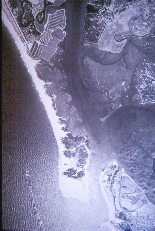 Imagen aérea 1956, flecha litoral Sancti-Petri. Estrecho cuerpo arenoso y desarrollo de marismas al abrigo de la flecha. Algunas explotadas como salinas. La flecha aparece cortada por abanicos de desbordamiento activos durante temporales marítimos