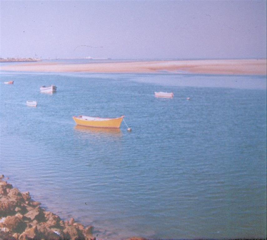 Vista aérea extremo meridional flecha de Valdelagrana. Al sur está limitada por rellenos artificiales del Bajo de la Cabezuela, donde se ubican astilleros de Puerto Real. Detrás, marismas de Los Toruños, del Parque Natural de Bahía de Cádiz