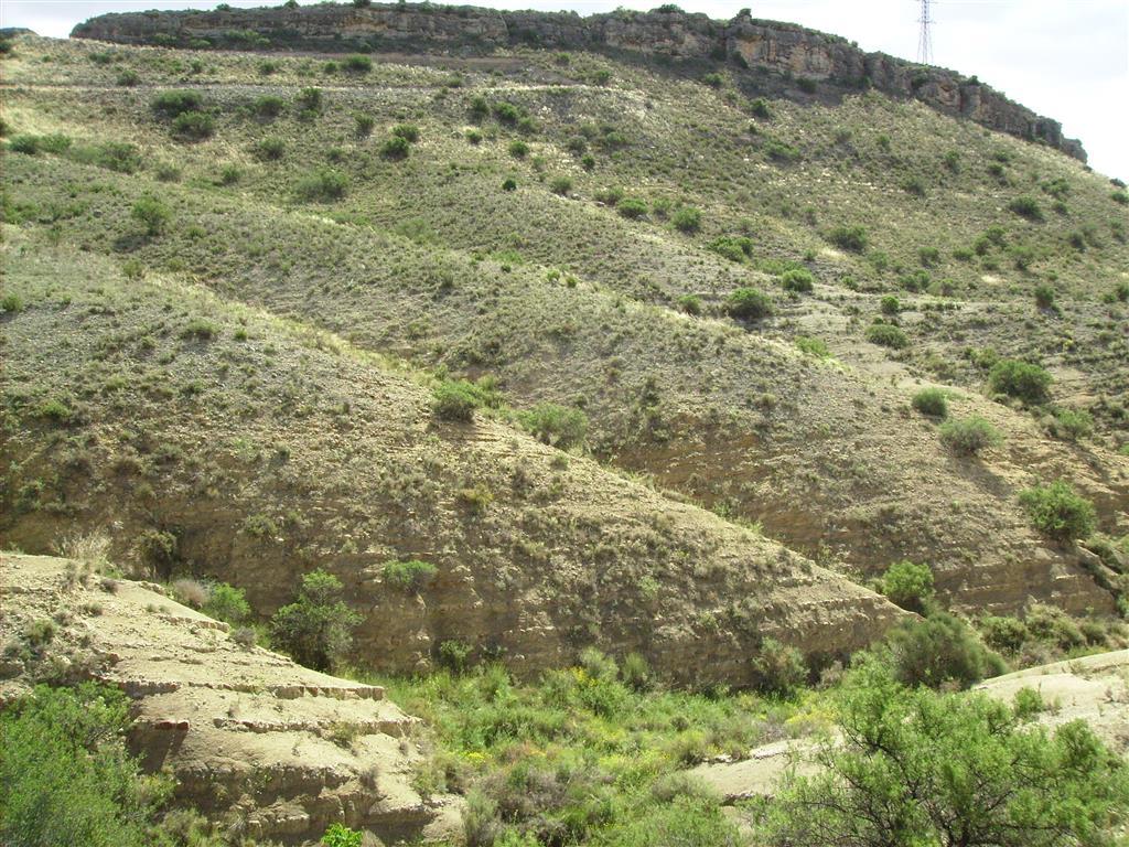 Sección Toarciense-Aaleniense en el camino de las Conchas. Detalle de la extraordinaria exposición que presentan los ciclos sedimentarios de las zonas Serpentinus y Bifrons.
