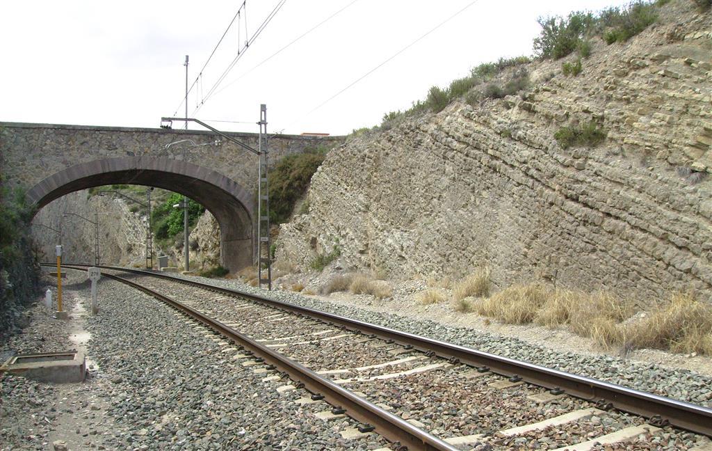 Techo de las calizas tableadas de la Fm. Cuevas Labradas (Sinemuriense) en trinchera del ferrocarril de Ricla (Sección del Juncal).