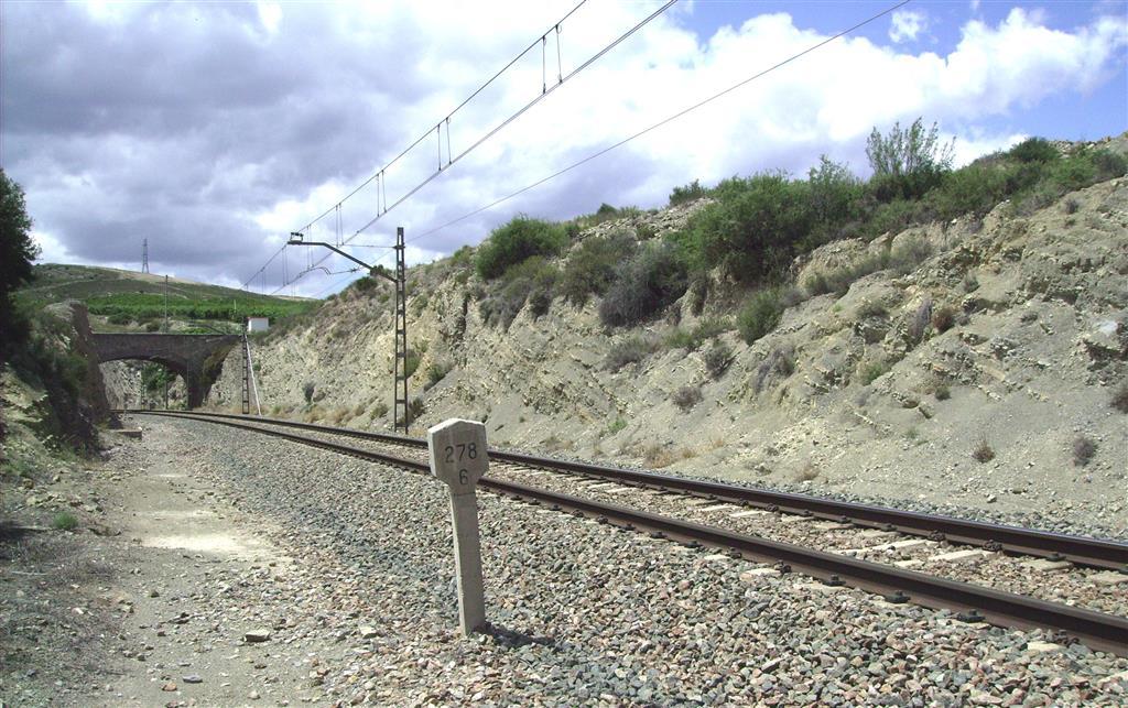 Margas de la F. Cerro del Pez (Pliensbachiense) en trinchera del ferrocarril de Ricla (Sección del Juncal).