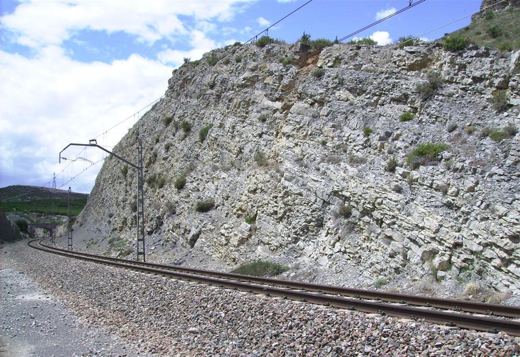 Tránsito entre los materiales del Toarciense y los materiales del Aaleniense en la trinchera del ferrocarril de Ricla (sección del Juncal). En la parte izquierda afloran materiales de las zonas Insigne p.p., Pseudoradiosa y Aalensis, y en la parte derecha afloran materiales del Jurásico Medio.