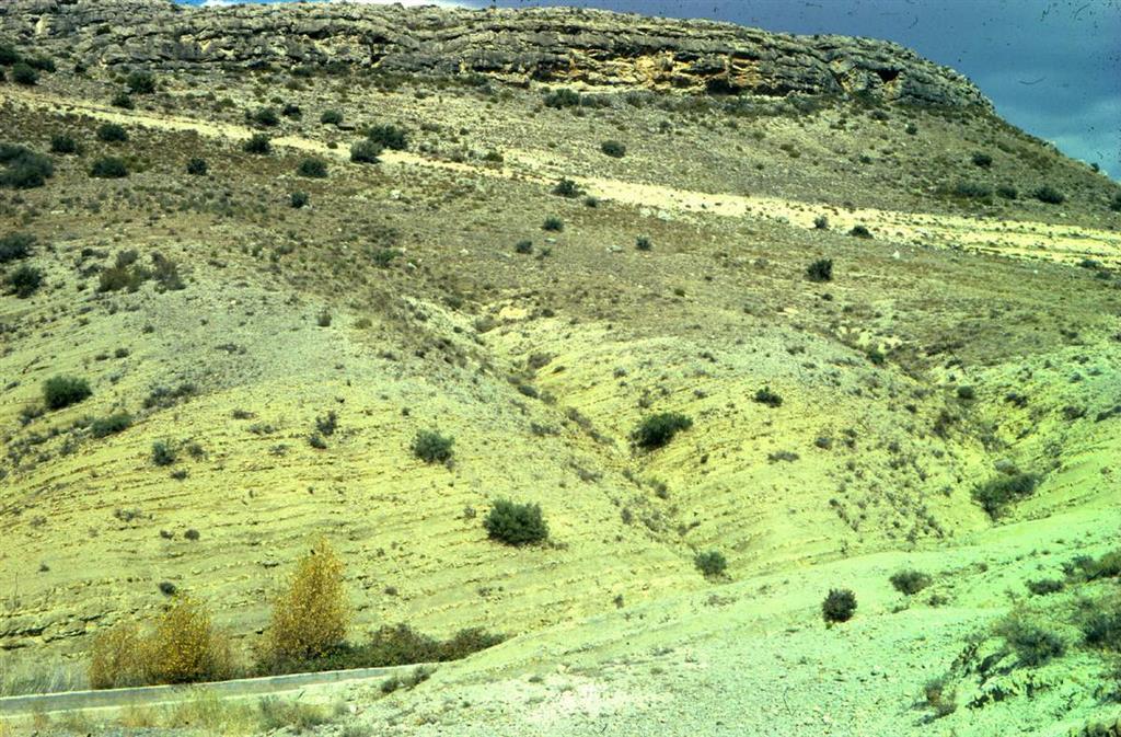 Vista general de los materiales del Toarciense en La Almunia de Doña Godina. En la Parte inferior derecha se observan los materiales del tránsito Toarciense-Pliensnbachiense. En la parte central afloran perfectamente los materiales de las zonas Tenuicostatum, Serpentinus y Bifrons.
