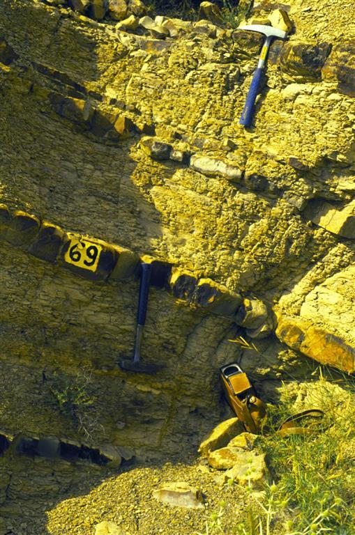 Detalle, en el Toarciense inferior de la sección Ricla (Camino de las Conchas). Por debajo del martillo inferior se observan los materiales de la Zona Tenuicostatum correspondientes al evento anóxico. Entre ambos martillos puede verse una secuencia de som