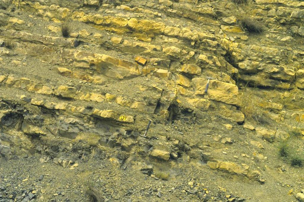 Detalle de los materiales de la Zona Aalensis en la trinchera de ferrocarril de Ricla. Puede observarse una secuencia de somerización entre los dos martillos