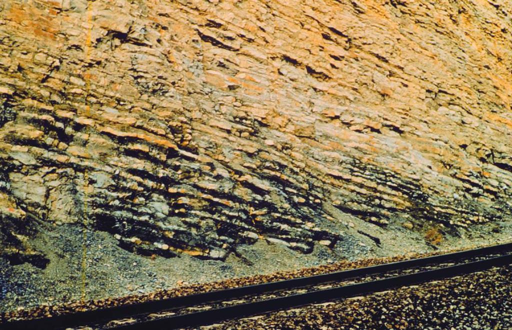 Detalle de la alternancia de margas y calizas de la Fm Turmiel, en la trinchera del ferrocarril de Ricla. Corresponde a las Zonas Variabilis p.p., Thouarsense e Insigne p.p