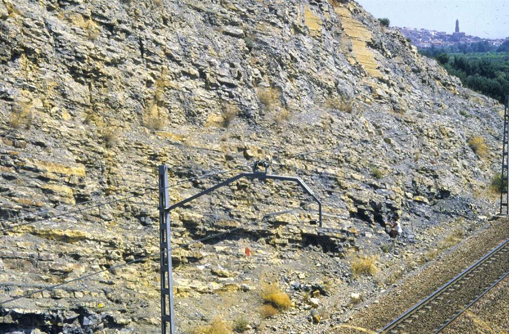 Detalle del tránsito entre los materiales del Toarciense y los materiales del Aaleniense en la trinchera del ferrocarril de Ricla. En la parte izquierda afloran materiales de las zonas Insigne p.p., Pseudoradiosa y Aalensis, y en la parte derecha afloran materiales del Jurásico Medio.