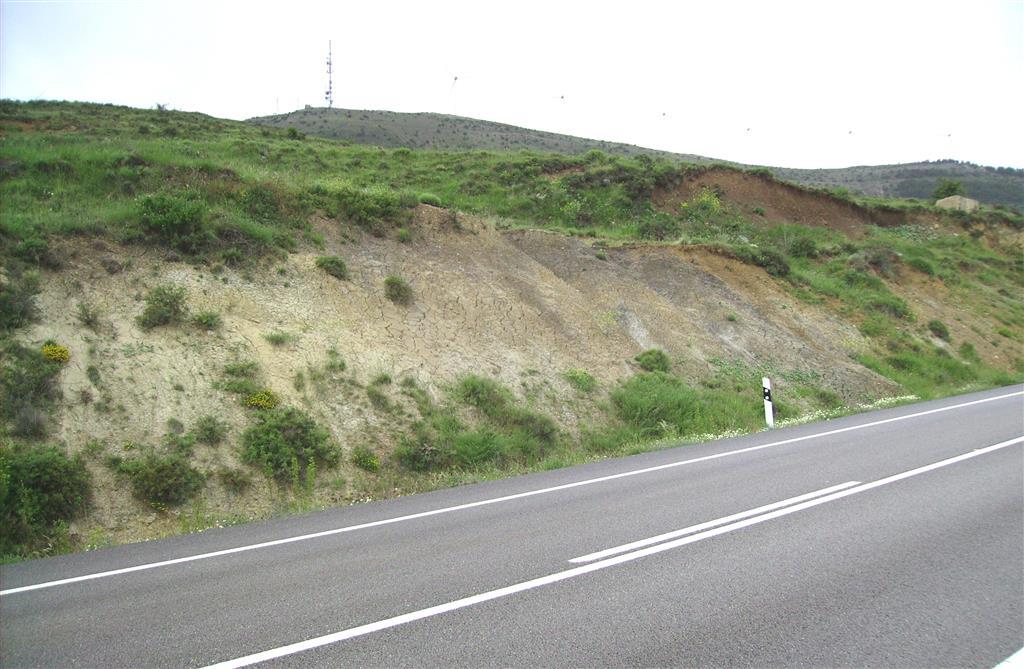Arenas y limolitas de la parte basal de la Fm. Arenas de Utrillas. Puerto de San Just.