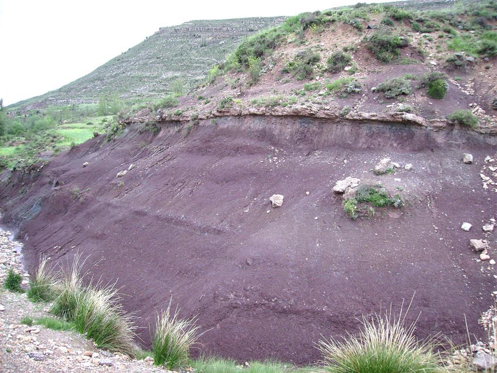Arcillas vinosas de la Fm. Arcillas de Morella, Barremiense superior-Aptiense inferior, en la base de la secuencia estratigráfica, en las proximidades del río Blanco, Allepuz.
