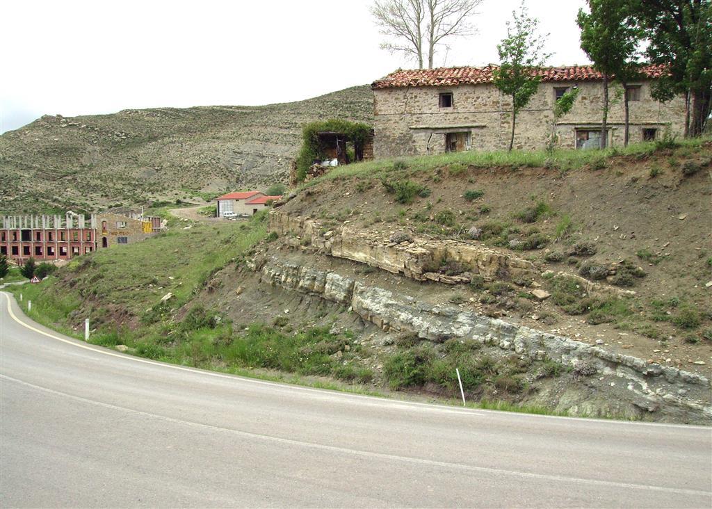 Calizas arenosas del Mb. Calizas de la Ermita de Santa Bárbara (Barremiense superior-Aptiense inferior). Allepuz.