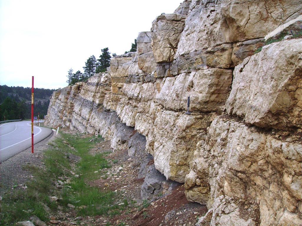 Fm Calizas Dolomíticas del Embalse de la Tranquera (Turoniense superior-Santoniense). Barranco del Losar. Carretera A-226.