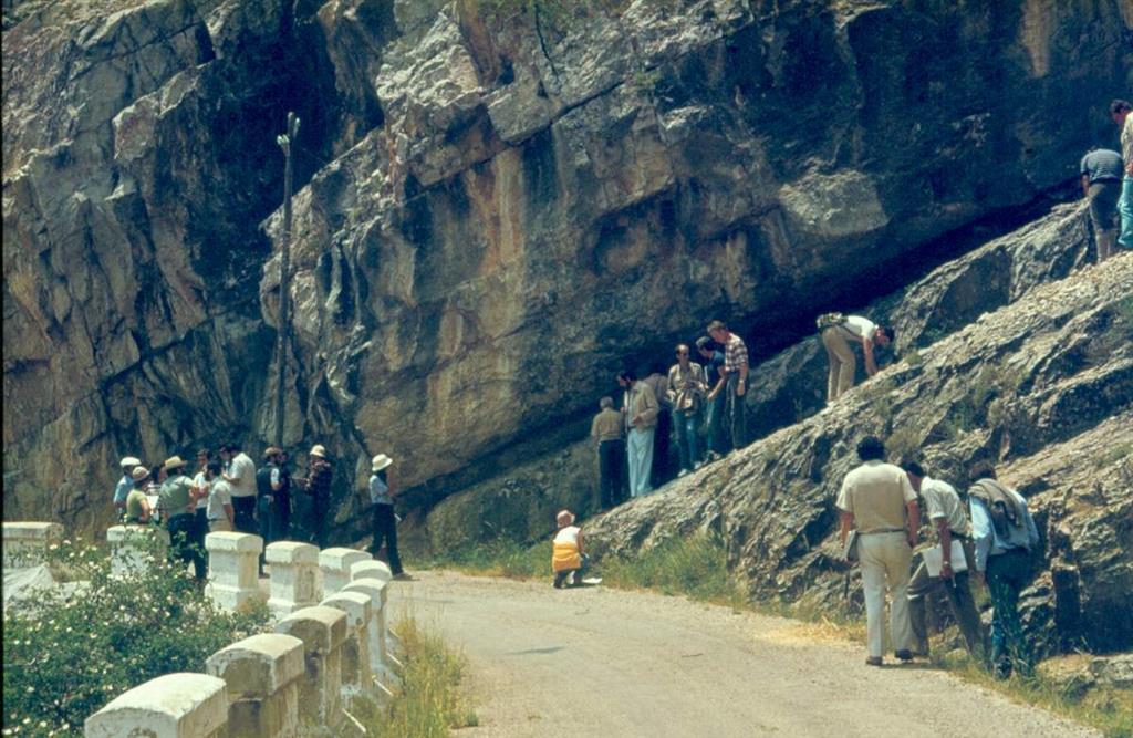 Calizas urgonianas del Aptiense en las trincheras de la carretera de Villarroya de Pinares a Miravete de la Sierra