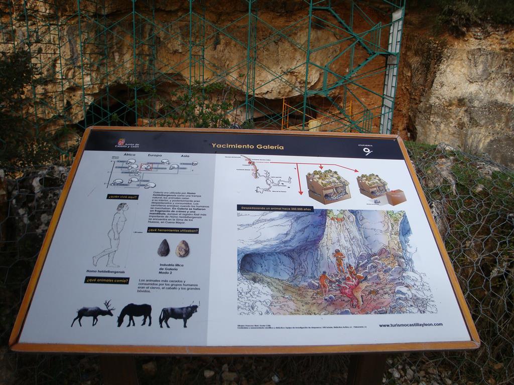 Panel explicativo del yacimiento de Galería. Trinchera del ferrocarril. Atapuerca.