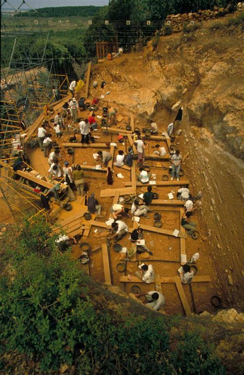 Vista general de la excavación del yacimiento Gran Dolina en la trinchera del ferrocarril de la Sierra de Atapuerca, durante una campaña de excavación de los últimos años (foto Equipo Investigador de Atapuerca)