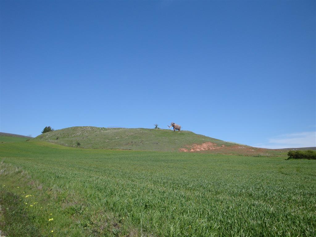 Vista de la loma donde se encuentra el yacimiento paleontológico de Ambrona desde la carretera de Ambrona a Torralba. Hay una réplica de un Palaeoloxodon antiquus que es el emblema del yacimiento.