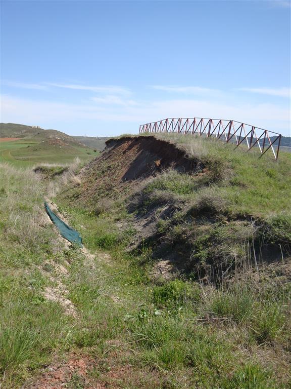 Restos de las excavaciones de el yacimiento paleontológico de Ambrona del Pleistoceno medio (400.000 – 350.000 años).