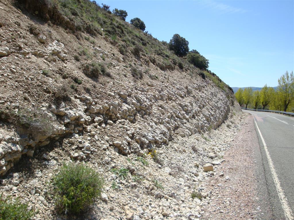 Corte en la carretera de entrada a Somolinos. Niveles de calizas nodulosas correspondientes a ambientes palustres que se han interpretado como una transgresión generalizada en la cuenca Ibérica.