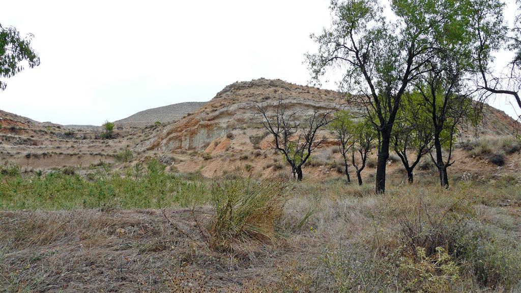 Vista al N de las unidades basales del relleno mioceno de la cuenca (lutitas rojas de la Unidad de Valdemoros-Vargas; abanicos aluviales de escaso desarrollo), en las proximidades del basamento paleozoico.