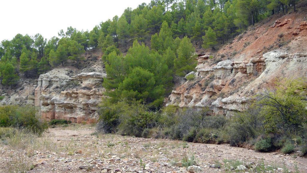 Unidad de Las Planas (lutitas rojas con intercalaciones margosas –verdes y grises- y carbonatos nodulosos blancos), formadas en zonas de bajo relieve en áreas distales de abanicos aluviales.