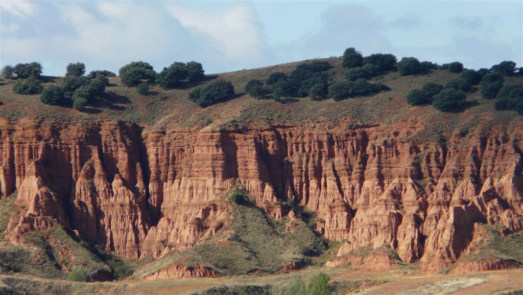 Facies detríticas (limos y arcillas rojas) fosilíferas (Formación Navarrete) correspondientes a facies de zonas medias o distales de abanicos aluviales.