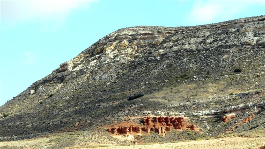 Margas y calizas (parte superior de la Formación Agreda) de medios palustres o lacustres.