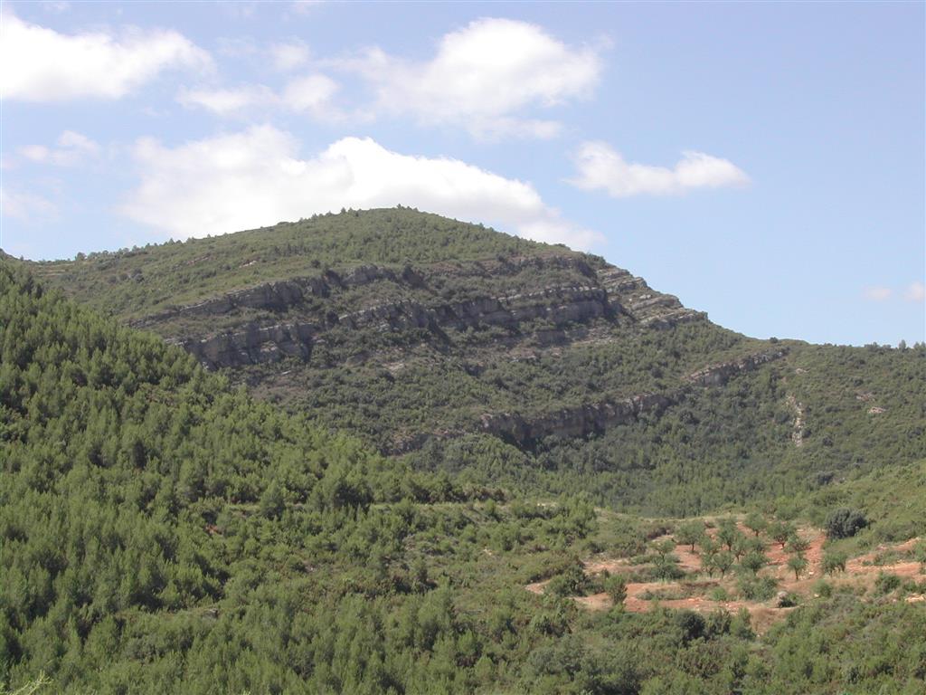 (676.361, 4.383.021). Vista de detalle de (zoom en) las unidades del Cretácico superior de la Sierra del Burgal desde el camino de subida a la Fuente de la Puerca.