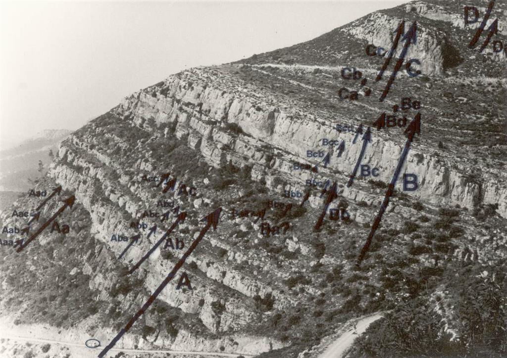 Cartografía de la secuencialidad y ciclicidad sobre la expresión morfológica de la sucesión sedimentaria.