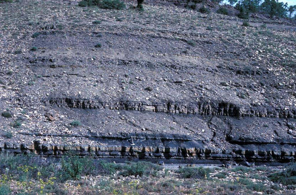 Sedimentos de origen lacustre del Pérmico inferior. Formación La Ermita (Rillo de Gallo)