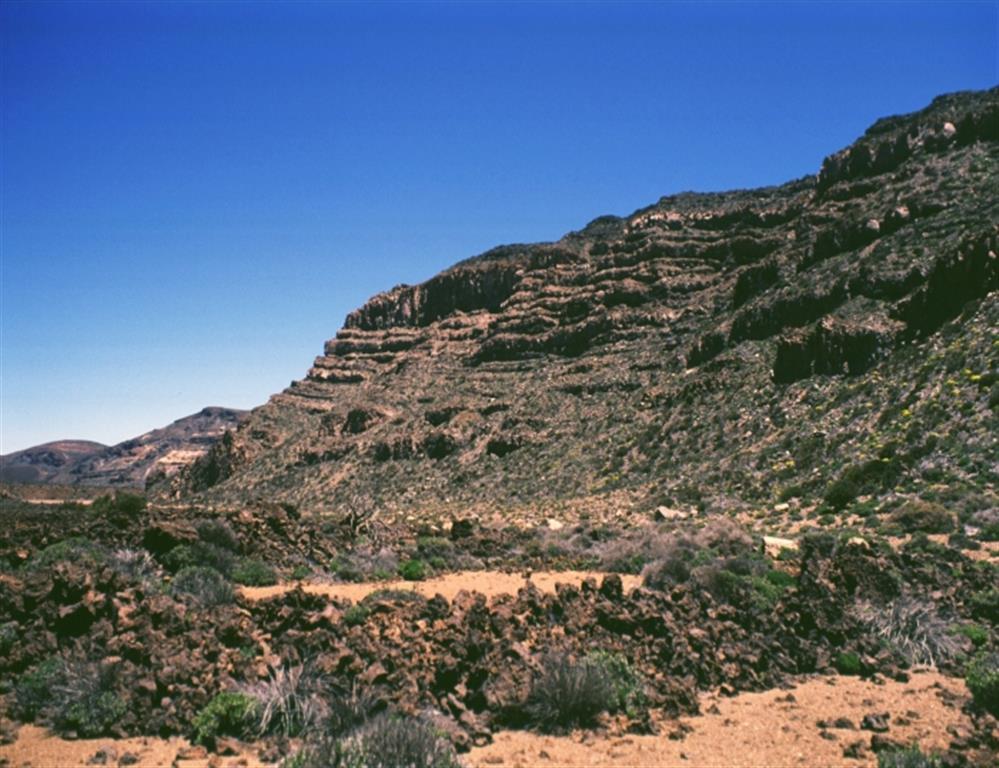 Pared de Cañadas en la Zona de las Pilas. Autor: J.L. Barrera